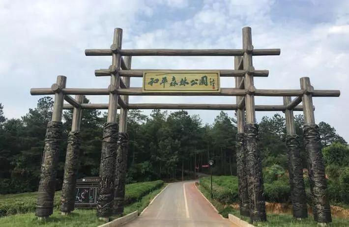 住宿)--(第二天)珩琅山风景区--珩琅山玫瑰谷--大鳄山庄(午餐)--和平